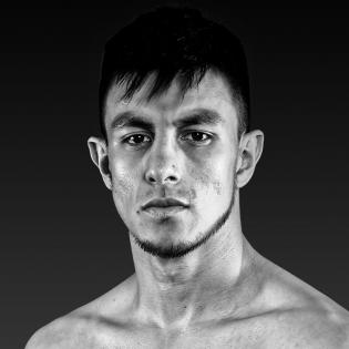 Jose Luis Gallegos fighter profile