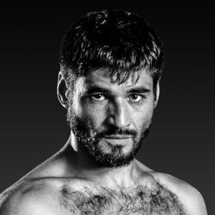 Mike Gavronski fighter profile