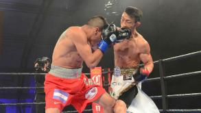 Castillo vs Obara highlights: November 7, 2015