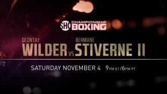 Wilder vs Stiverne II - Brooklyn Boxing Preview
