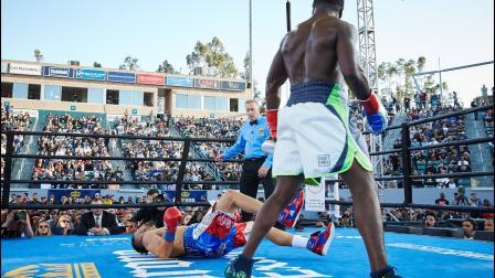Knockout highlights: April 30, 2016